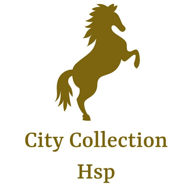 City Collection Hoshiarpur
