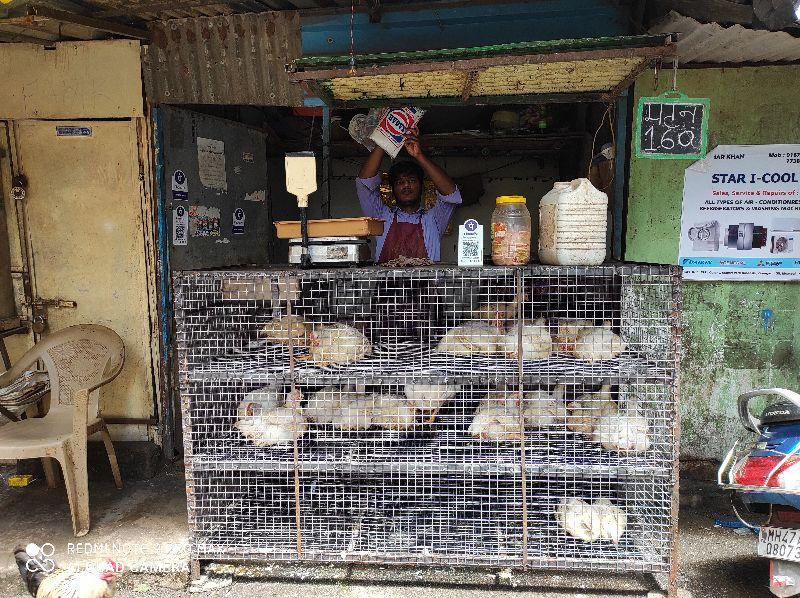 Shifa Chicken Shop