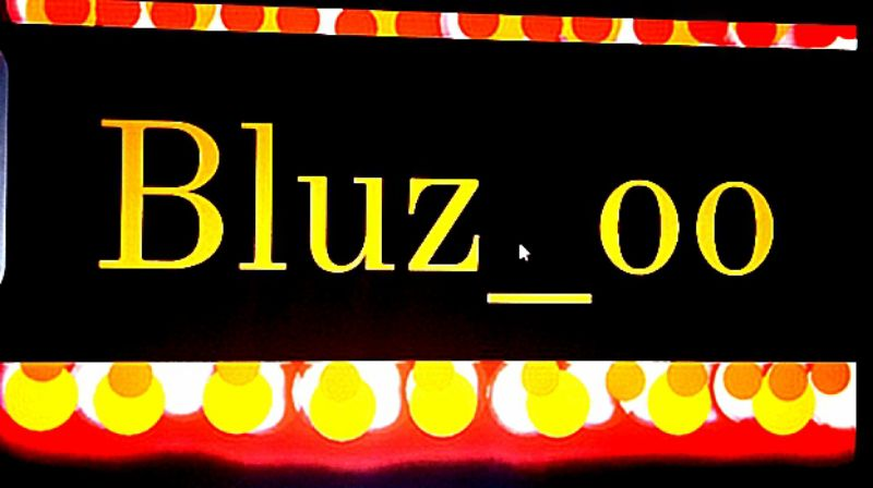 Bluzoo