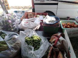 Vivek Tea And Vegetables