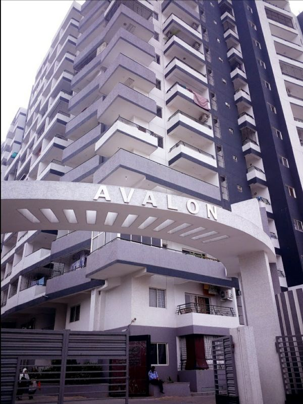 Avalon E Groceries
