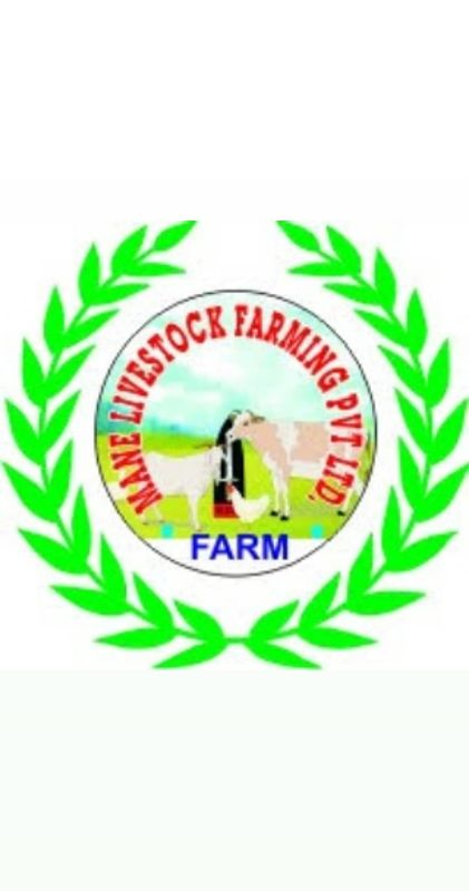 Mane Livestock Export