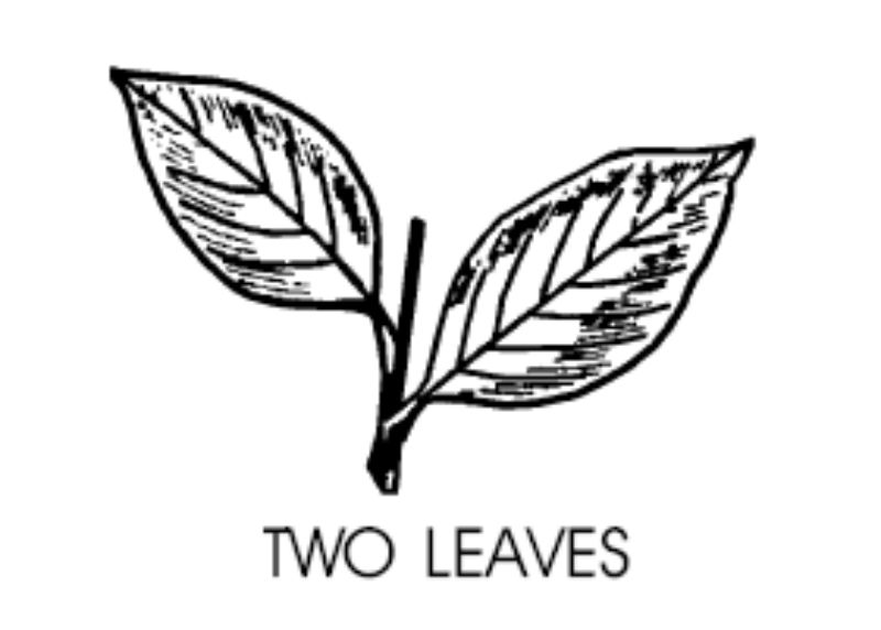 Two Leaves (Tees Spring)