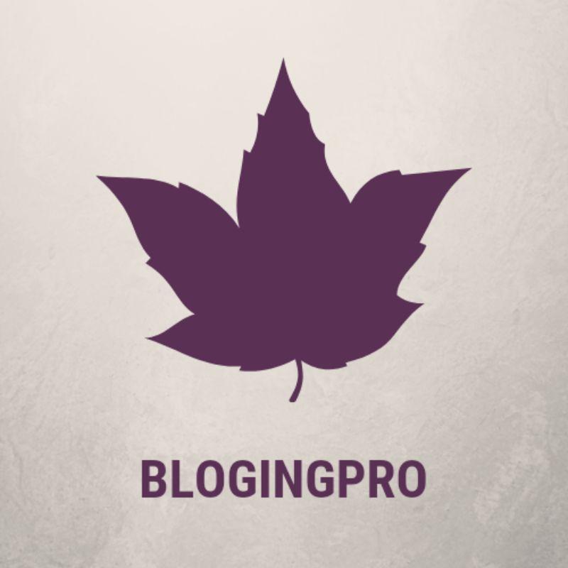 Blogingpro