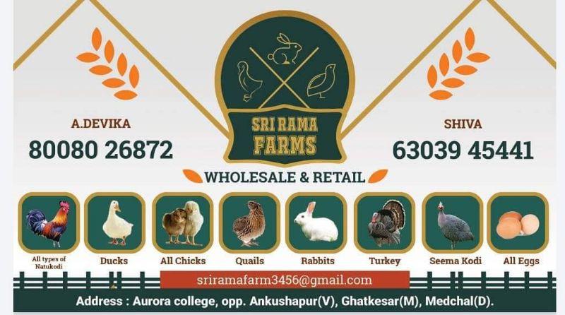 Sri Rama Farms And Hatcheries