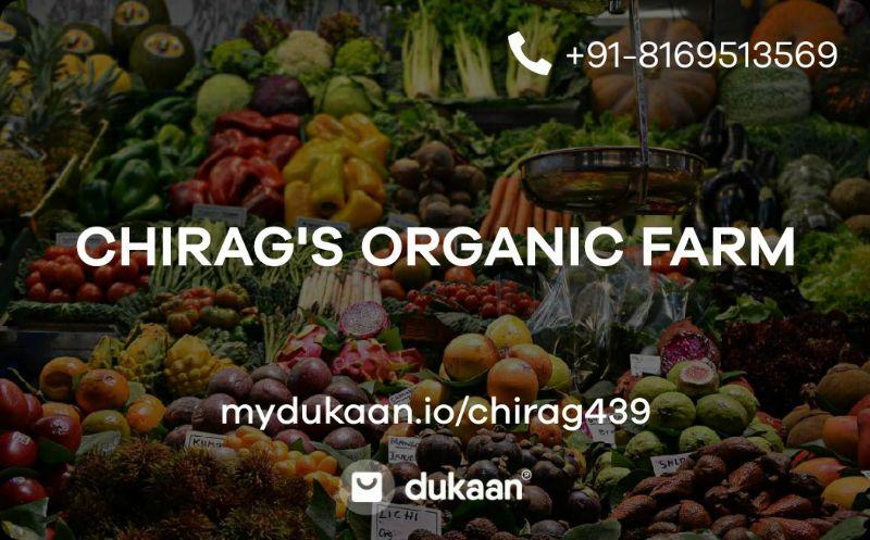 CHIRAG'S ORGANIC FARM