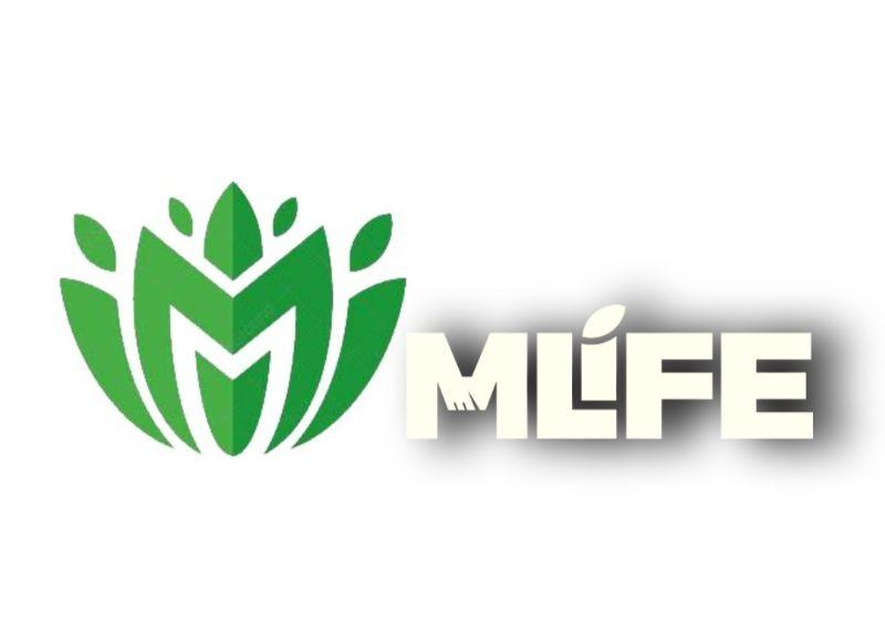 M life Enterprise