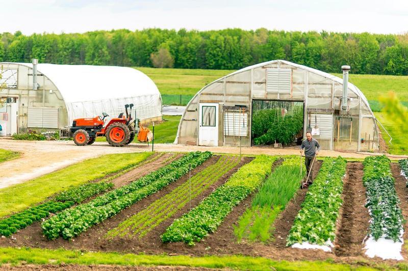 Sweeter Day Farm