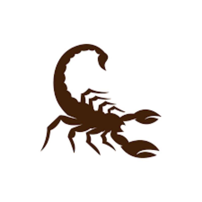 Scorpous Groups