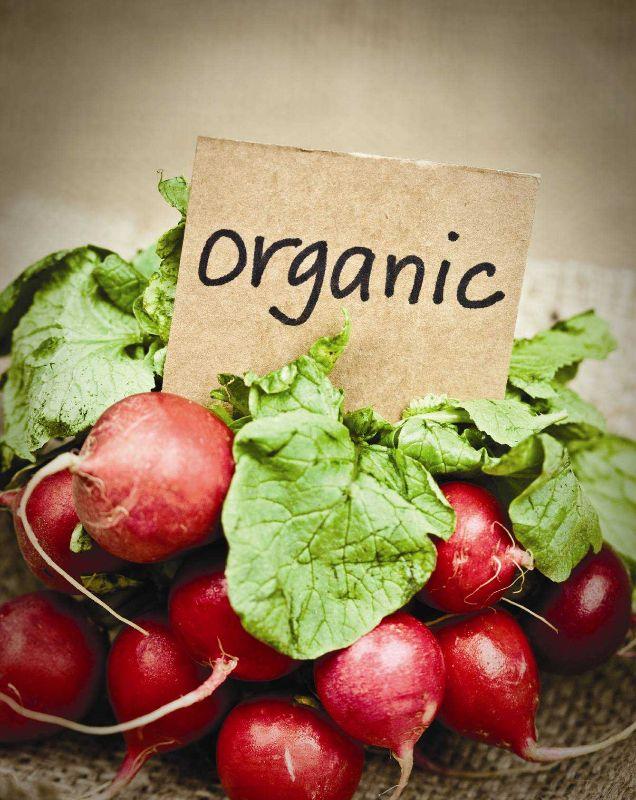 New Fresh Organic &vegetables &fruiths Shope Item