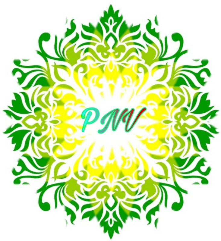 PNVBILLPAY